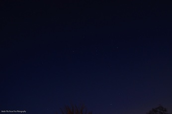 Constellation Orion; Sirius is on the bottom on the right third of the photo.