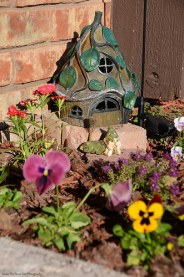 The Fairy Garden in January