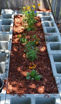 The mulched flower garden bed.