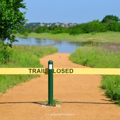 The Shoreline Trail is closed, due to high water. I have to be honest, I wasn't expecting the level to be this high.