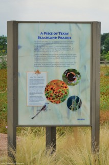 """Blackland Prairie """"Natural Area"""" sign (front)"""