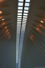 The One World Trade Center Tower can be seen through the windows of the PATH-Station windows in the roof.
