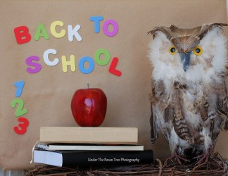 "Happy First Day ""Back To School""!"