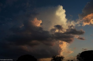 I love the shapes, the colors, and the 'long-nosed face' in those clouds.