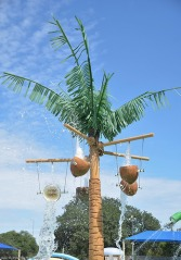 Coconut display at the splash zone