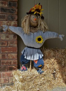 Daisy, the Scarecrow
