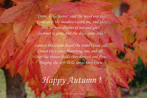 Happy First Day of Autumn!