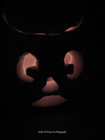 Katelynn cleaned out her own 'Jack'. But I helped her to cut the face into the pumpkin. (2007)