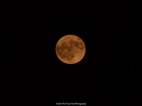 Tonight's Harvest Full Moon (closest to the Autumn Equinox) shines bright in the October night sky.