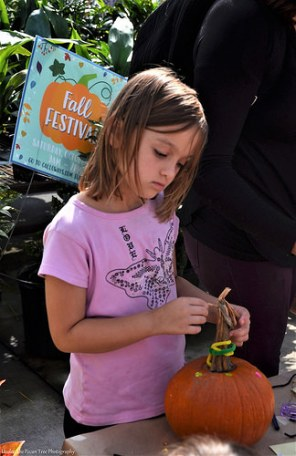 Sara decorates her pumpkin at the Calloway's Harvest Festival.