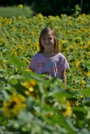 Sara in the Sunflower Maze