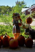 Autumn/Halloween decor at the farm