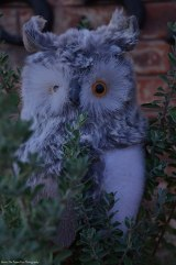 The owl watches carefully, who visits our house. Maybe it will be a mouse. ;)
