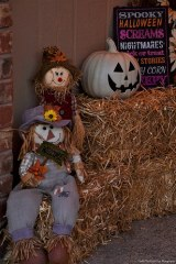 The scarecrows welcome you to our home.