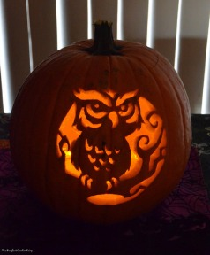 Happy Owl-oween! (2014)