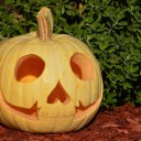 Courtney, the neighbor's daughter, carved a really cool-looking pumpkin. (2014)