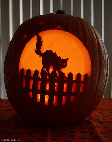 """On The Fence"" Pumpkin 2016"