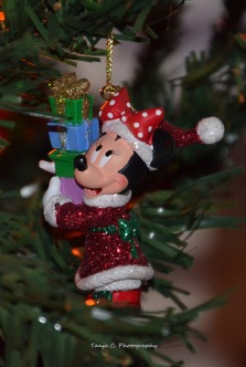 Isn't Minnie adorable in her cute little Christmas outfit?