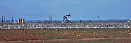Oil pumps and cotton fields belong to Texas