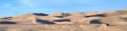 Imperial Sand Dunes Recreation Area