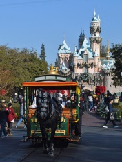Horse carriage in front of the Castle