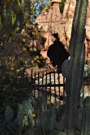 Everything is silent at the Big Thunder Mountain Railroad