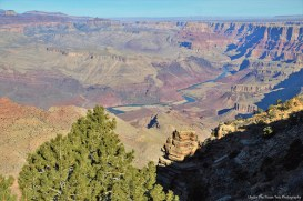 This little river, named the Colorado River, carved this wonderful canyon in a span of 6 Million years.