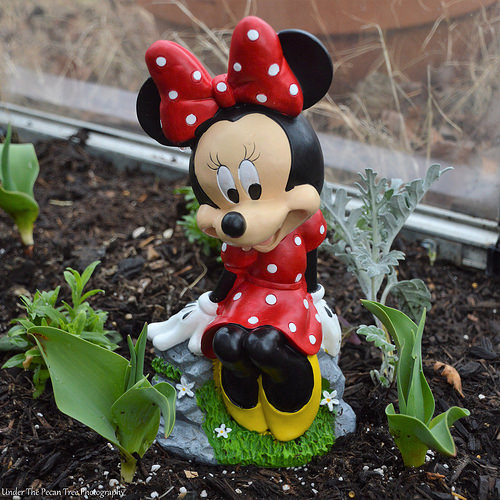 "Minnie says, she's happy when Spring arrives and everything will be in full bloom. ""How beautiful will that be, sitting here with my big bow and enjoy the smell of fresh flowers."""
