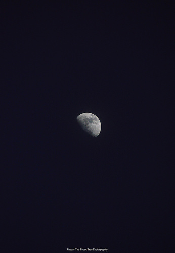 Waxing Gibbous Moon (02-24-2018)
