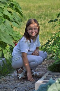 Sara looks for ladybugs in my tomato bed.