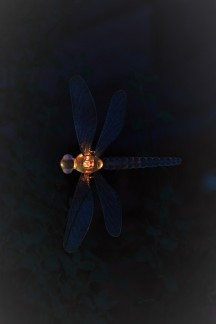 Dragonfly light in orange/yellow