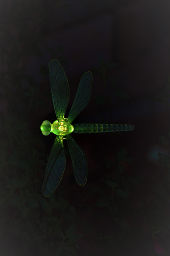 Dragonfly light in yellow/green