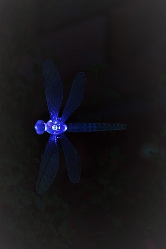 Dragonfly light in blue