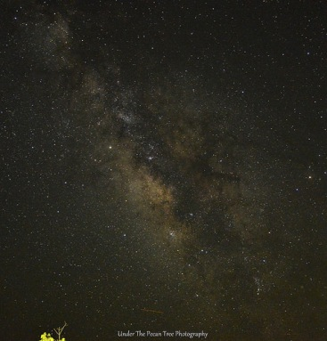 The Milky Way in southern Utah