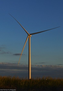 Texas wind turbine near Amarillo