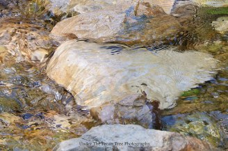 Crystal clear water at the creek (2015)