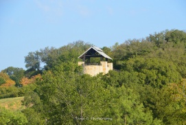 The Arbor Hills Nature Preserve Observation Tower I