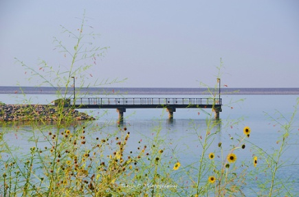 The Pier at the lake