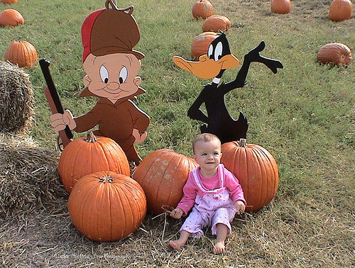 Katelynn's first visit at the pumpkin patch.