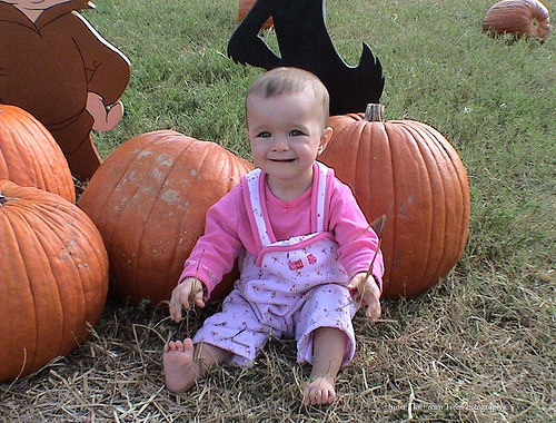 The pumpkins are almost bigger than her. :D