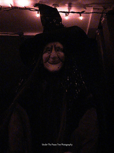 The witch in the dark (2007)