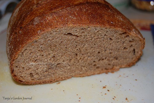 Hmm, yummy home baked bread from the Dutch oven.