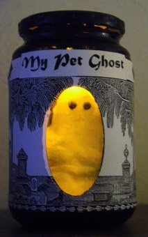 DIY Pet Ghost (2014)