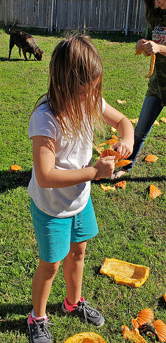 Sara has so much fun, destroying the pumpkins.