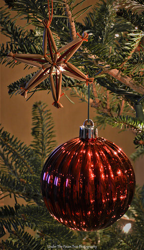 The ornaments look so pretty on the Fraser Fir.