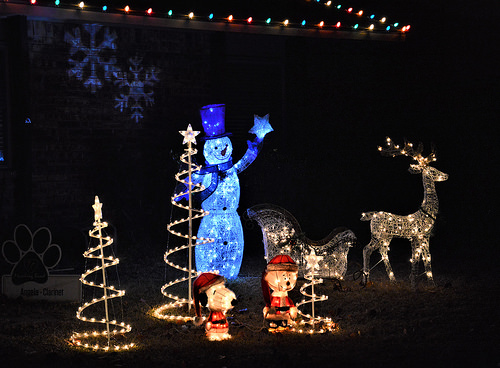 Our outdoor Christmas lights, this year.