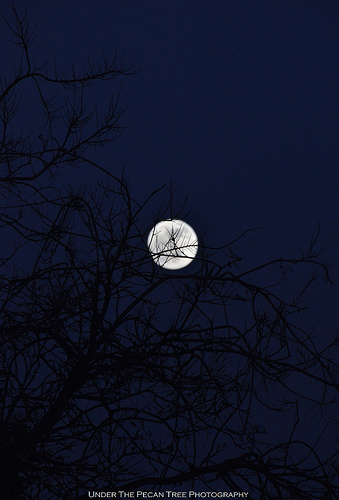Tonight's Full Cold Moon (12-21-2018)