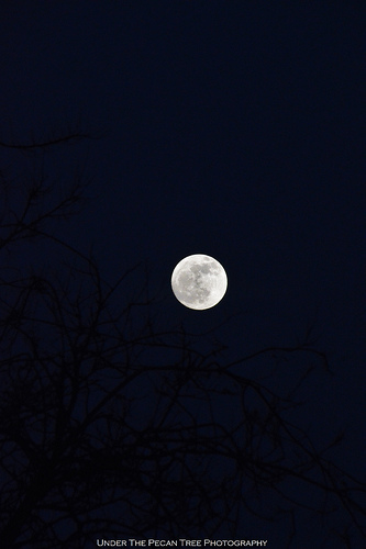 With the Winter Sostice, we also celebrate the Full Cold Moon tonight.