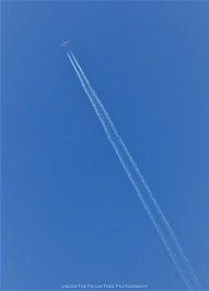 Contrails & Deep Blue Skies