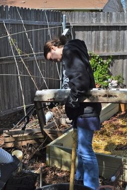 Katelynn scrapes the soil out of the metal greenhouse frame, so we can find the drill holes.
